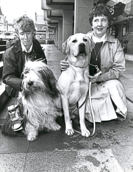 1990: Bearded Collie Scotia takes a break from helping his mistress, Mrs Ailsa Gill (left), to collect money for the Guide Dogs for the Blind Association in the St Nicholas Centre, to meet guide dog Nicholas and Mrs Ann Scrogie, appeals manager at Princess Alexandra House, Forfar. The £3,000 raised during last year's appeal paid for Nicholas to be trained. Fellow guide dogs will be collecting in the centre until Saturday. Money raised will go to Princess Alexandra House and the recently opening mini centre in Lanarkshire.