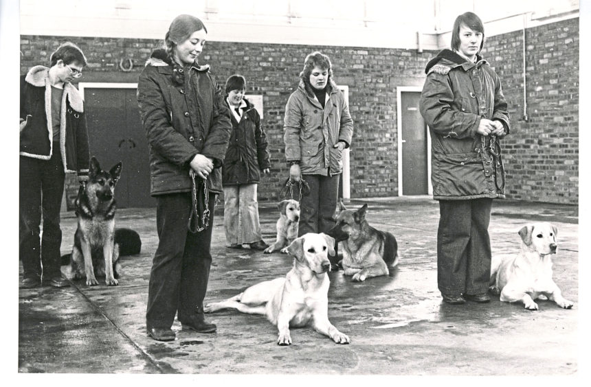 1980: Dog handlers (below) give obedience training to the dogs at the Guide Dog Training Centre, Forfar.