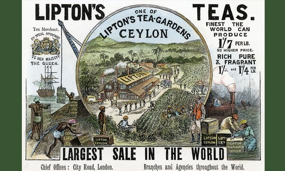 People from the north-east went off to produce tea in far-flung parts of China, Asia and India during the 19th century.