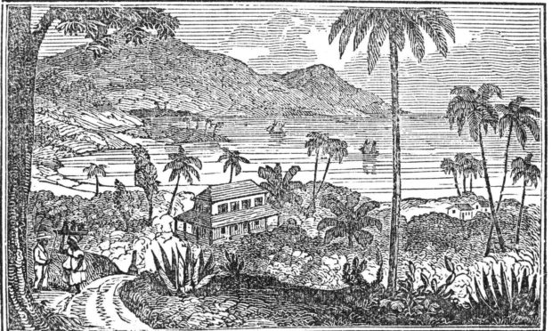 A 19th Century wood engraving of a plantation In Jamaica.