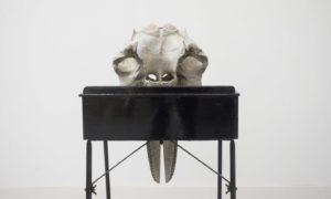 sculpture installation