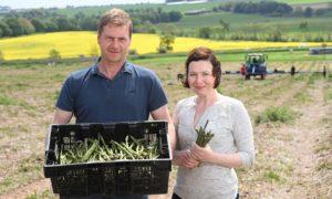 Neil and Jillian McEwan posing with a box of Lunan Bay Farm asparagus