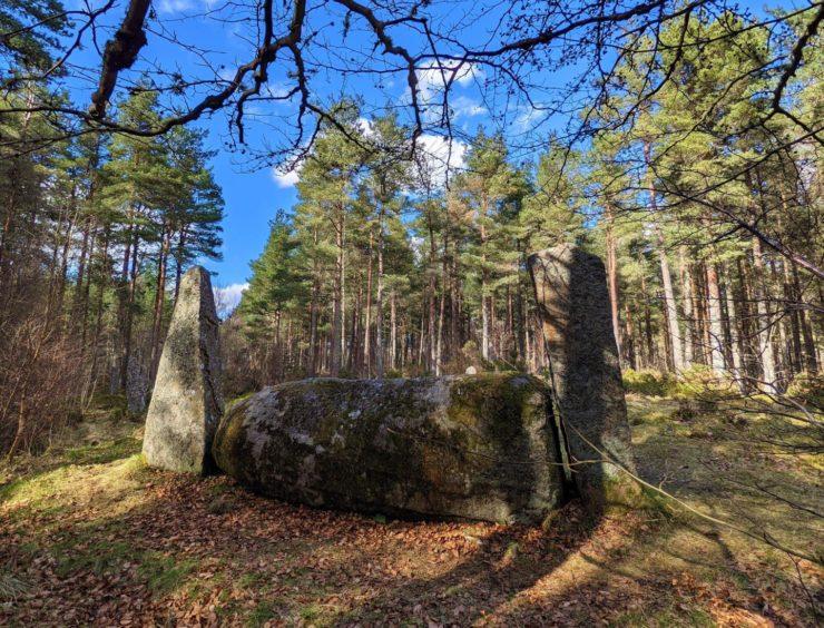 VA May - RediscoverABDN - Barry Pickard - Cothiemuir Stone Circle