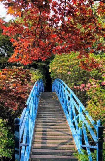 VA May - RediscoverABDN - Ray McDonald - Johnston Gardens Bridge