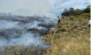 Outdoor survival instructor Leon Durbin has apologised after a bonfire in his garden sparked a wildfire at the Sound of Arisaig last week.