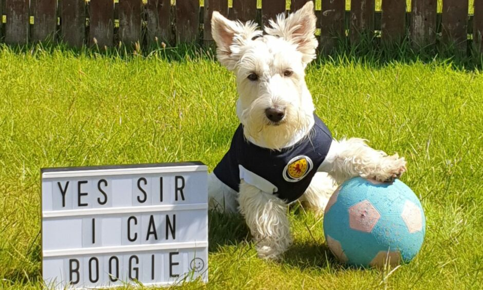Scotland fan Cooper in Portlethen, where he lives with Nichola Greig.