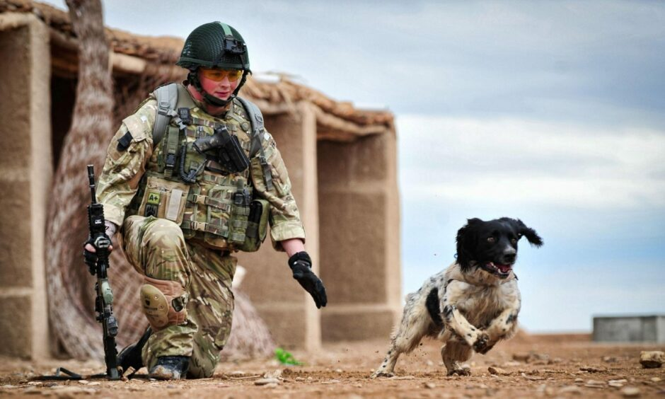 Liam Tasker with his military dog Theo