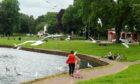 Gulls at Cooper Park in Elgin. Photo: Jason Hedges/DCT Media