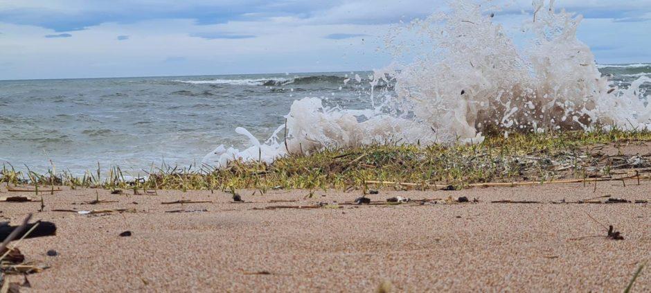VA Rediscover August - Heather Lepkowski - Catching the waves