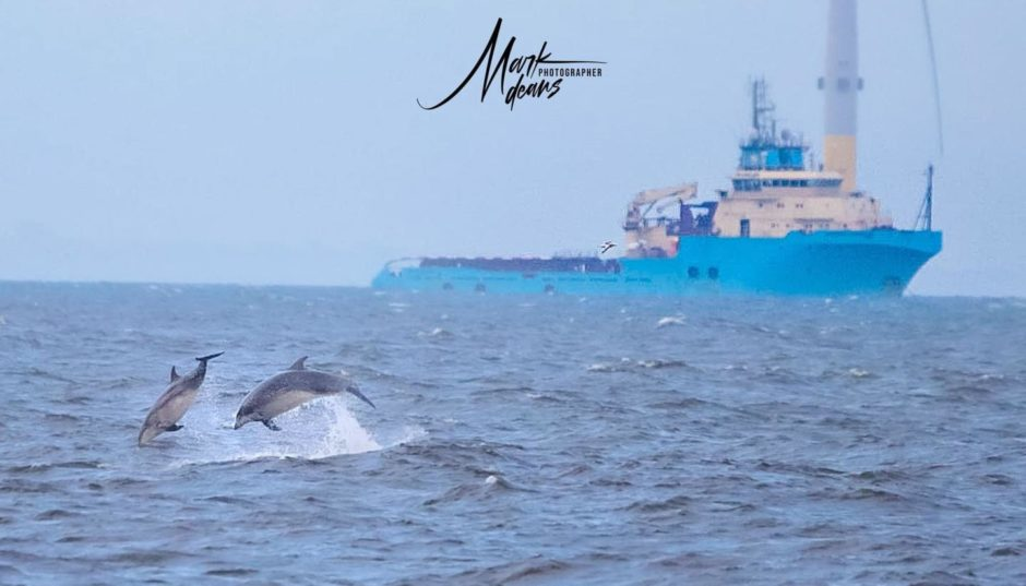 VA Rediscover August - Mark Deans - Coastline