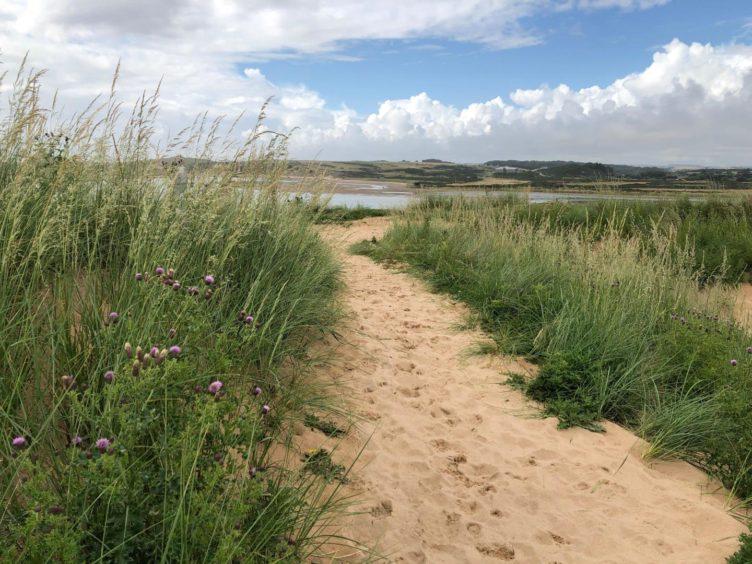 VA Rediscover August - Stephanie O'Rourke - View from Forvie sands