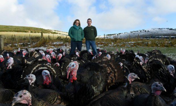 Becky Perry and Ian Stuart at Ledmacoy Turkeys, Strathdon.