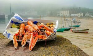 This month's winner Michael Diamond's image of seafood salad from Stonehaven's Seafood Bothy.