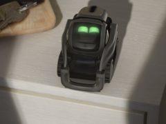 Anki's Vector robot (Anki)