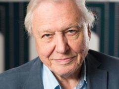 Sir David Attenborough is urging MSPs to ban the mechanical harvesting of kelp (David Parry/PA)