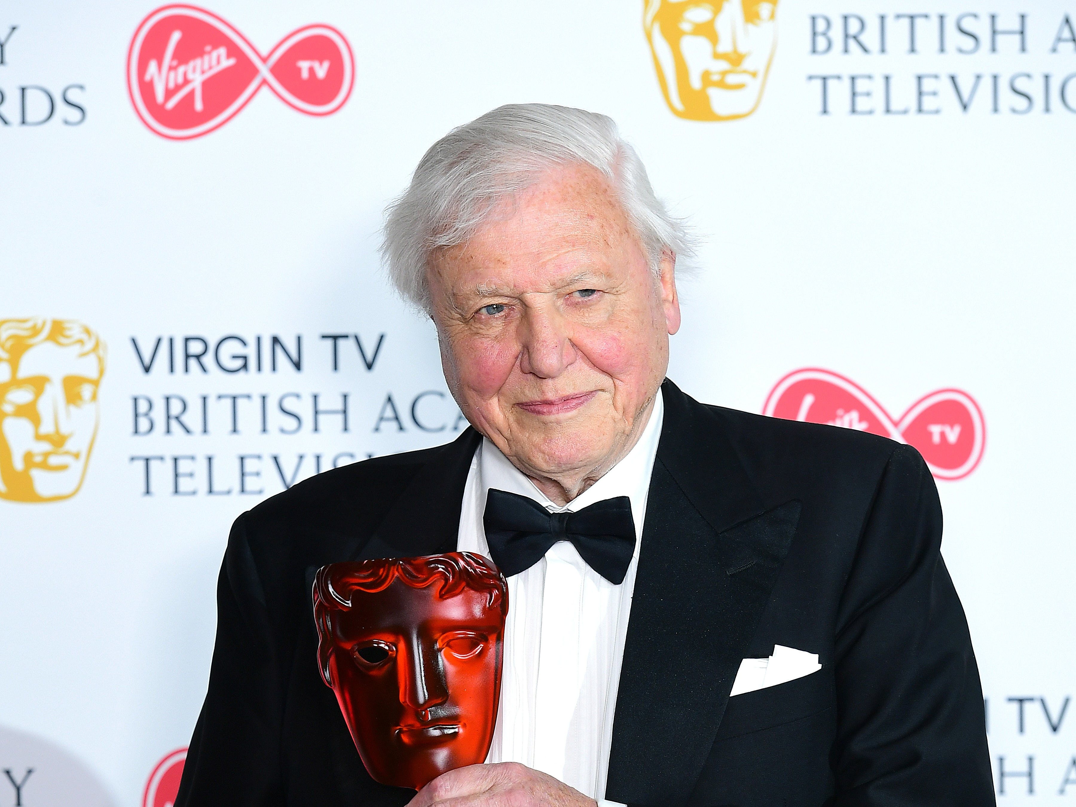 Attenborough on edge of his seat watching footage from new