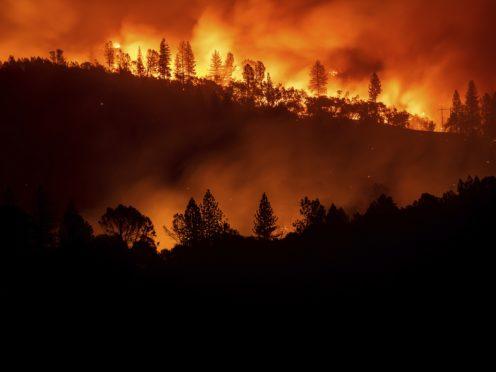 The blaze broke out on Thursday (Noah Berger/AP)