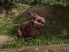 Viewers were left unimpressed by the animation in the BBC's adaption of Watership Down, with many comparing it to a bad video game (BBC/PA)