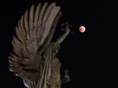 A super blood wolf moon over the peace statue on Brighton seafront (Andrew Matthews/PA)