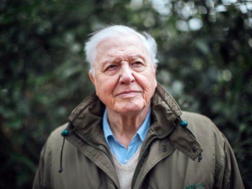 Sir David Attenborough will present the climate change documentary (Polly Alderton/BBC/PA)
