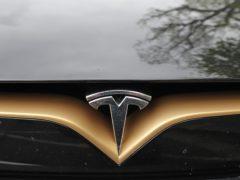 Tesla (Niall Carson/PA)