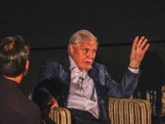 Sir David Attenborough in Bristol (Olumide Osinoiki/BBC/PA)