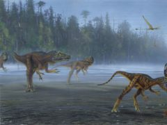Allosaurus jimmadseni attacking smaller dinosaurs (Todd Marshall/University of Utah)