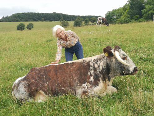 Mary Berry at English Farm (BBC/PA)