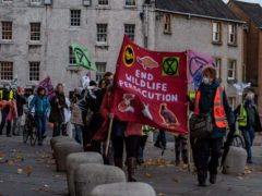 Protestors marched down the Royal Mile to the Scottish Parliament building (Extinction Rebellion Scotland/PA)