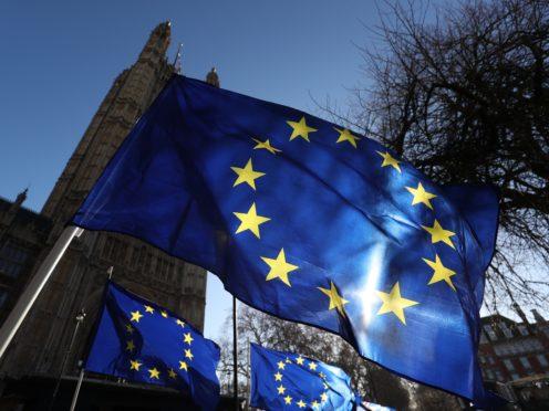 EU (Jonathan Brady/PA)