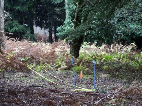 Yellow tape representing a fallen tree trunk and an orange flag marking the spot in woodland at Havant Thicket in Hampshire, where police found the body of Louise Smith, 16. The markers were placed at the scene on Monday, to aid a visit by the jury in the trial of Shane Mays, 30, of Havant, Hampshire, who is on trial at Winchester Crown Court charged with the murder of the 16-year-old who disappeared on VE Day.