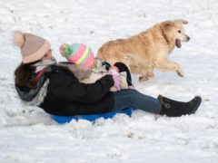 Pippa the golden retreiver plays in the snow with her owner Lizzy and Connie in a park in Newcastle-under-Lyme, Staffordshire (Joe Giddens/PA)