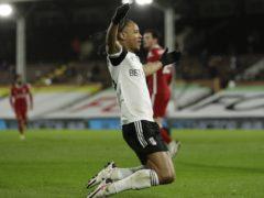 Fulham's Bobby Decordova-Reid earned manager Scott Parker's praises (Matt Dunham/PA)