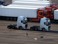 Some Northern Ireland pet owners face onerous documentary checks and unjustified vet treatments due to the Northern Ireland protocol, the agriculture minister said (Andrew Milligan/PA).