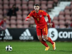 Swansea's Wales Under-21 international faces a lengthy spell out with an ankle injury (Nick Potts/PA)