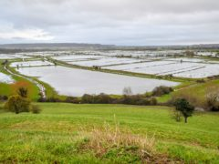 Flooded fields across the Somerset Levels near Burrowbridge, where surface water is already high in places (Ben Birchall/PA)
