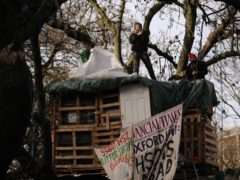 HS2 protesters in trees at the encampment in Euston Square Gardens (Aaron Chown/PA)
