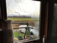 The swan smashed through the bathroom window (RSPCA/PA)
