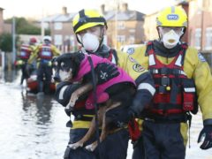 Pepper the dog is rescued from flooding in Warrington (RSPCA)