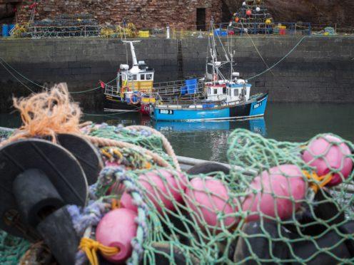 Fishing boats moored in Dunbar Harbour, East Lothian (PA)