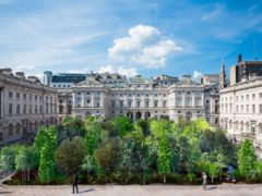 A 'forest' of 400 trees is to be planted at Somerset House as part of this year's London Design Biennale. Render by Es Devlin Studio (Somerset House/Kevin Meredith)