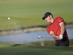 Rory McIlroy has spoken to Tiger Woods as he recovers in hospital following a car accident (Phelan M. Ebenhack/AP)