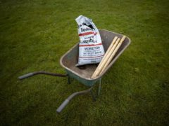 Stormont's Agriculture Minister Edwin Poots has said special cricket pitch soil can be freely moved from Great Britain to Northern Ireland (Liam McBurney/PA)