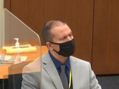 Former Minneapolis police officer Derek Chauvin (Court TV, via AP)