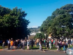 People gather on high ground in Whangarei, New Zealand, as a tsunami warning is issued (Mike Dinsdale/New Zealand Herald/AP)