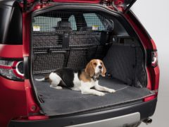 A dog guard needs to be installed if they're being kept in the boot (Land Rover)