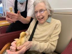Shelagh Howes, 91, said the ducklings made her smile (CHD Living/PA)
