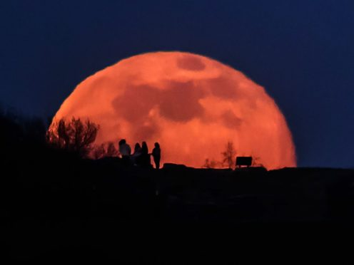 It is thought that there are around 15 trees in the UK whose seeds were flown around the Moon in 1971 (Danny Lawson/PA)