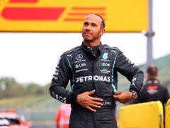 Lewis Hamilton produced a vintage qualifying display (Bryn Lennon/AP)