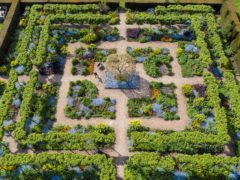 The winning image of Loseley Park Gardens, Surrey (Oliver Dixon/RHS/PA)